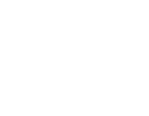 Intl Bancard all White LOGO-stacked